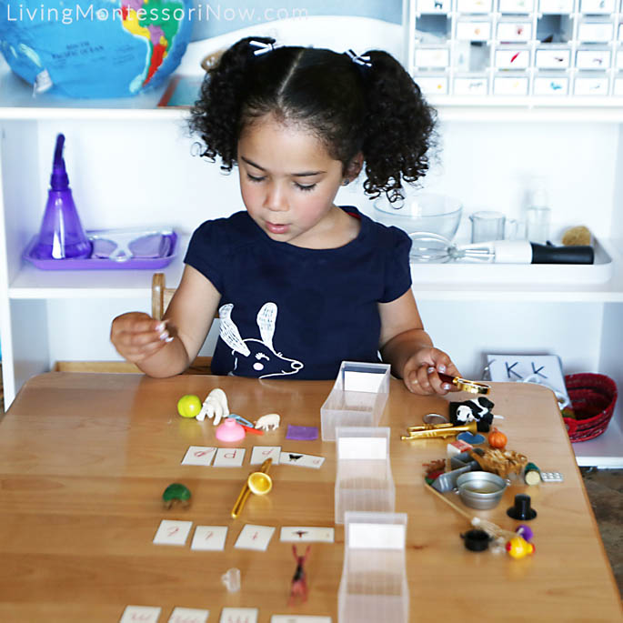 Sorting Letters and Objects from Alphabet Box Drawers