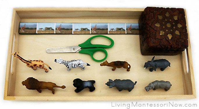 Tray with Zoo Animal Cutting Strips and African Animals