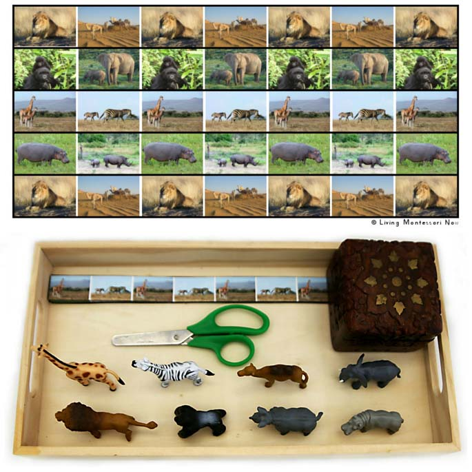 Zoo Animal Cutting Strips with Tray, Including Safari Ltd African Animal Figures