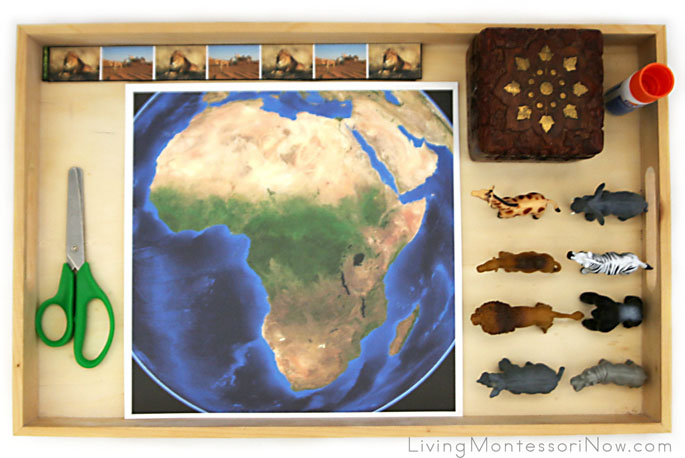 African Animal Cutting Strips and Map Tray
