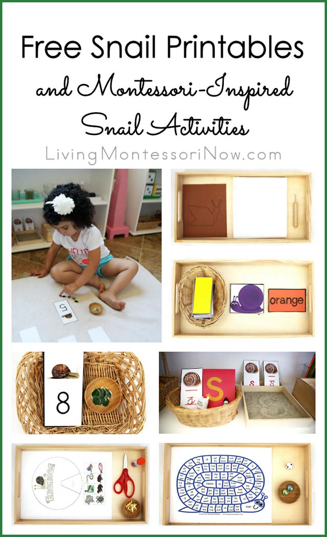 Free Snail Printables and Montessori-Inspired Snail Activities