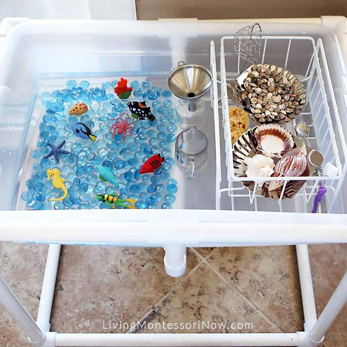 Indoor DIY Coral Reef Water Table with Practical Life Activities