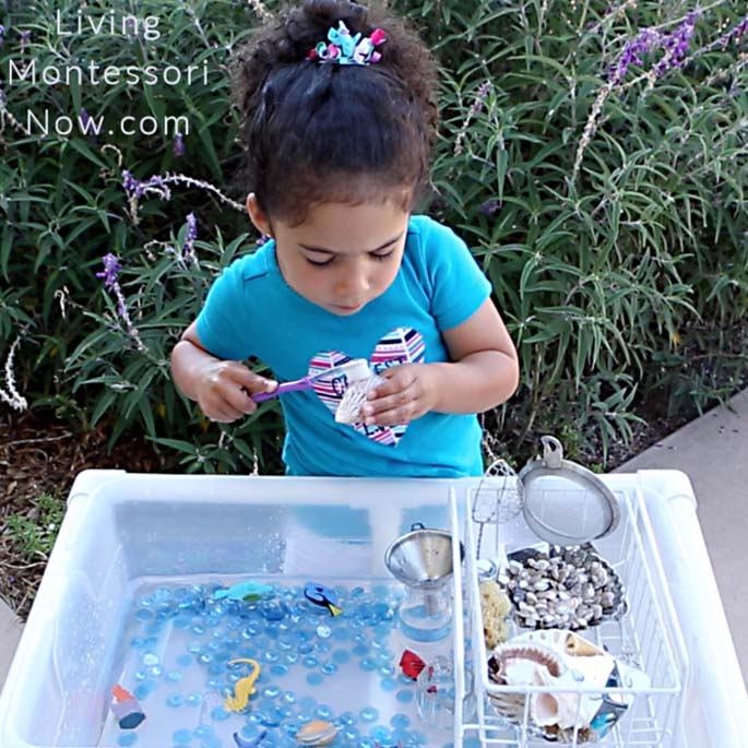 Scrubbing a Seashell in a DIY Outdoor Water Table