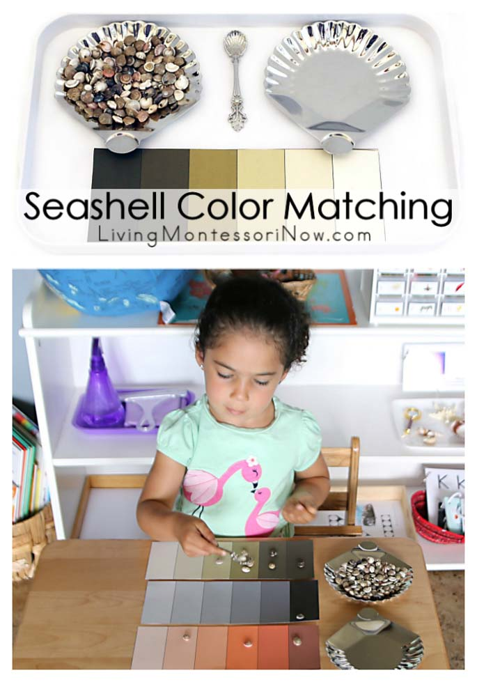 Seashell Color Matching {Easy-to-Prepare Variation of Montessori Color Box 3}