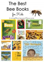 The Best Bee Books for Kids