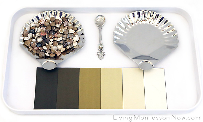 Tray for Matching Shades of Colors of Seashells