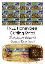 FREE Honeybee Cutting Strips (Montessori-Inspired Instant Download) – Montessori Monday