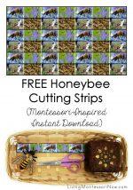 FREE Honeybee Cutting Strips (Montessori-Inspired Instant Download) – Montessori Monday