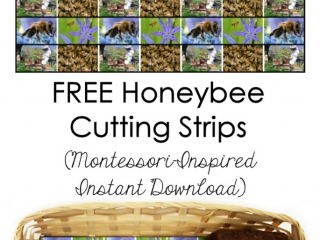 FREE Honeybee Cutting Strips (Montessori-Inspired Instant Download)