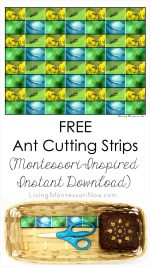 FREE Ant Cutting Strips (Montessori-Inspired Instant Download) – Montessori Monday