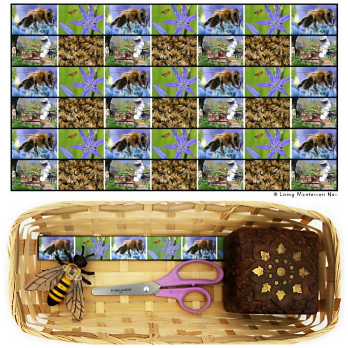 Honeybee Cutting Strips with Basket and Safari Ltd Honeybee