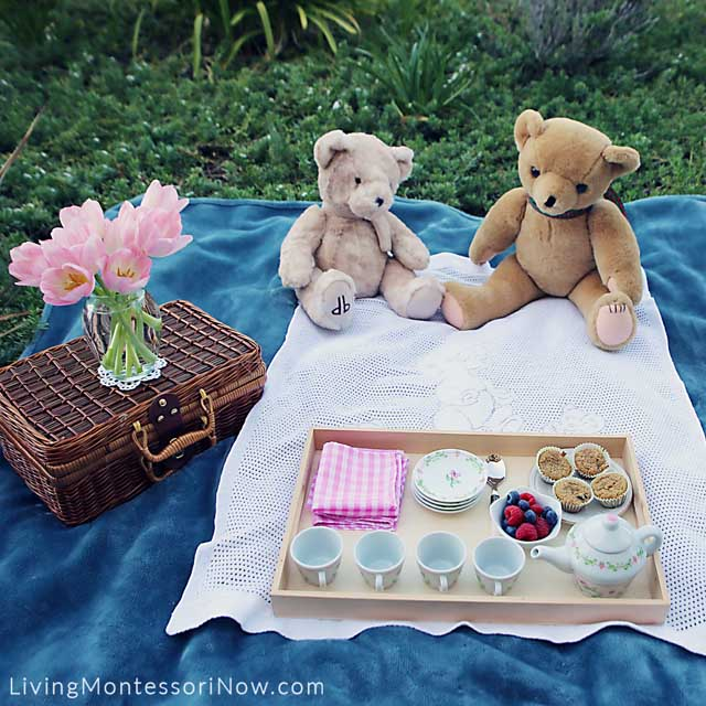 Items Used for a Healthy and Courteous Teddy Bear Picnic