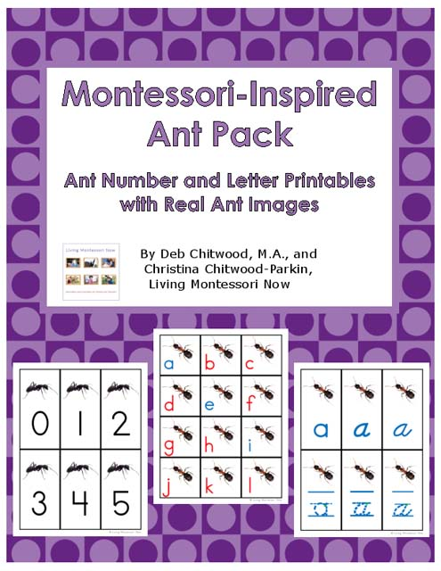 Montessori-Inspired Ant Pack