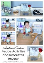 Montessori Services Peace Activities and Resources Review