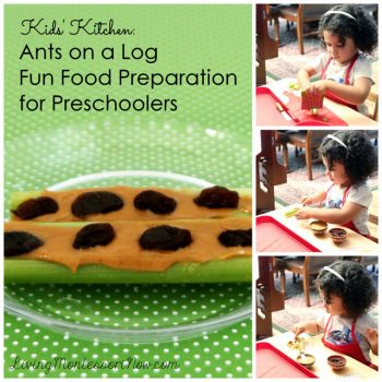 Ants on a Log Food Preparation for Preschoolers