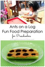 Ants on a Log Fun Food Preparation for Preschoolers