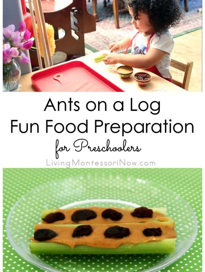 Ants-on-a-Log-Fun-Food-Preparation-for-Preschoolers
