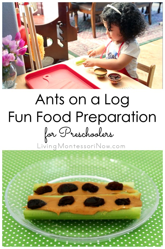 Ants On A Log Fun Food Preparation For Preschoolers Living Montessori Now