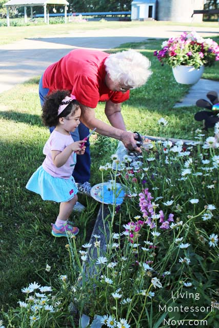 Excited about Gathering Flowers with Great-Grandma