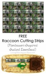 FREE Raccoon Cutting Strips (Montessori-Inspired Instant Download) – Montessori Monday