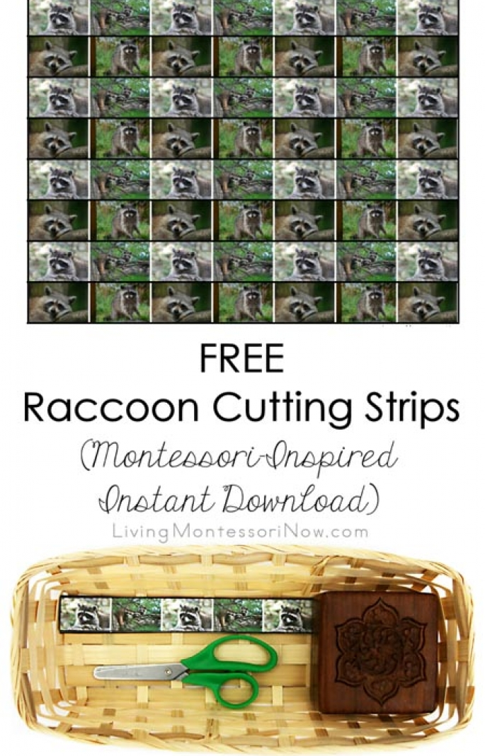 FREE Raccoon Cutting Strips (Montessori-Inspired Instant Download)