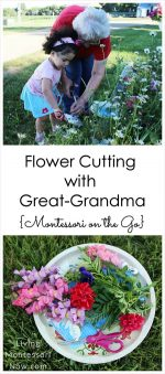 Flower Cutting with Great-Grandma {Montessori on the Go} – Montessori Monday