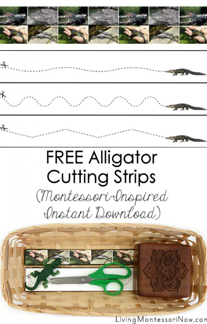 Free Alligator Cutting Strips (Montessori-Inspired Instant Download)