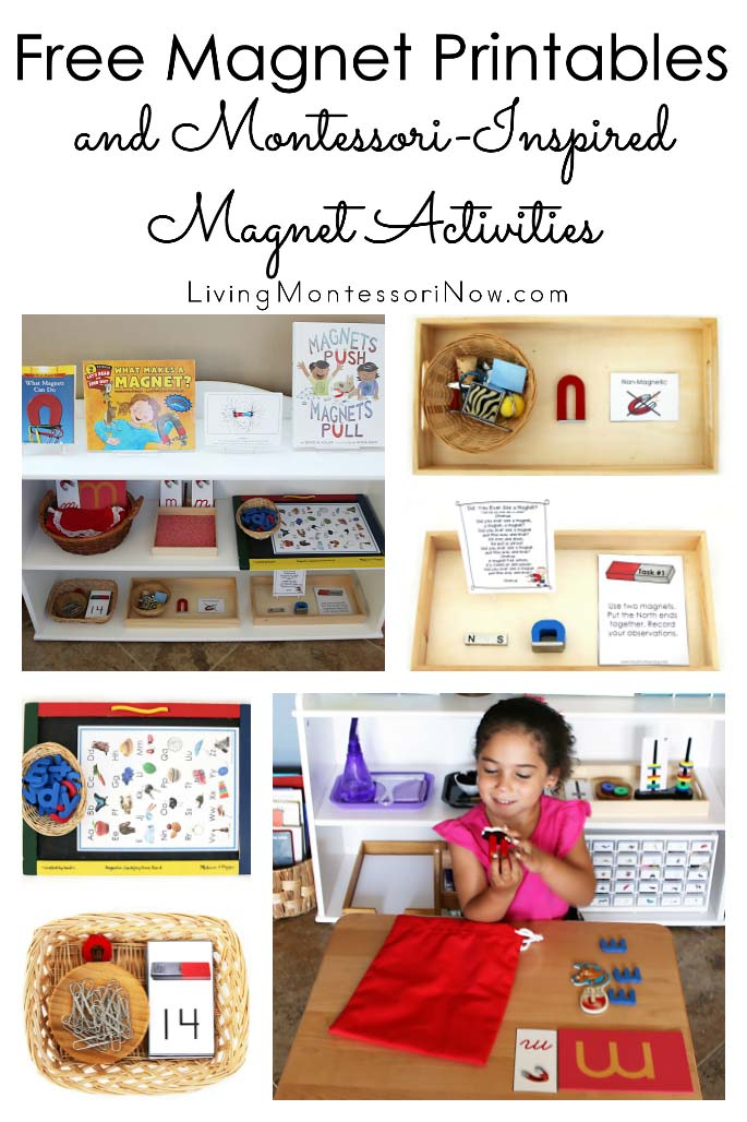 photograph regarding Printable Magnets named No cost Magnet Printables and Montessori-Encouraged Magnet