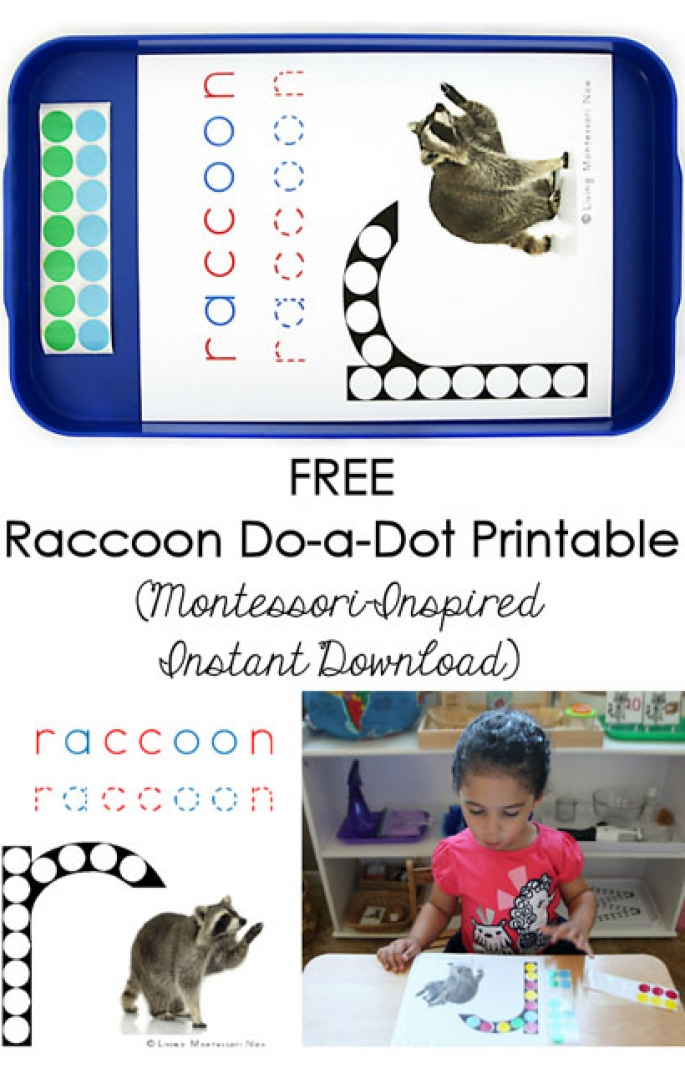 Free Raccoon Do-a-Dot Printable (Montessori-Inspired Instant Download)