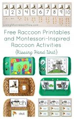 Free Raccoon Printables and Montessori-Inspired Raccoon Activities {Kissing Hand Unit} – Montessori Monday
