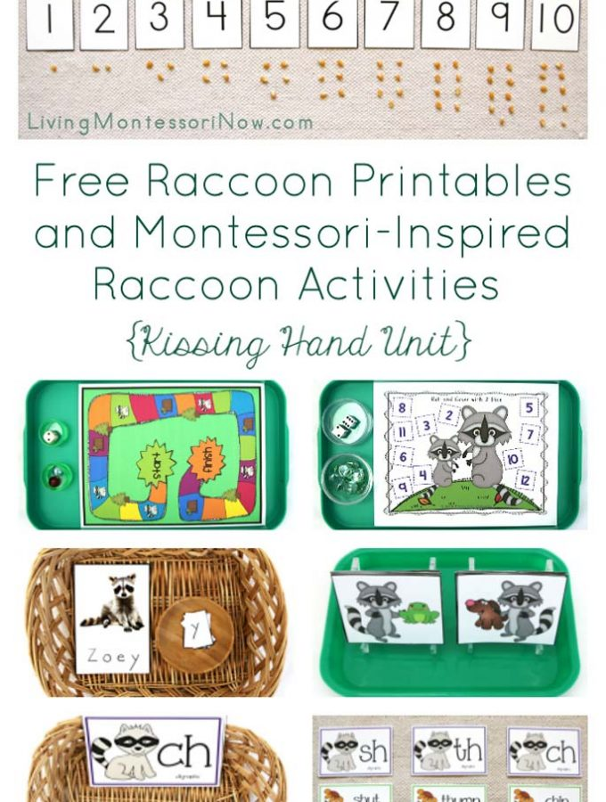 Free-Raccoon-Printables-and-Montessori-Inspired-Raccoon-Activities-{Kissing-Hand-Unit}
