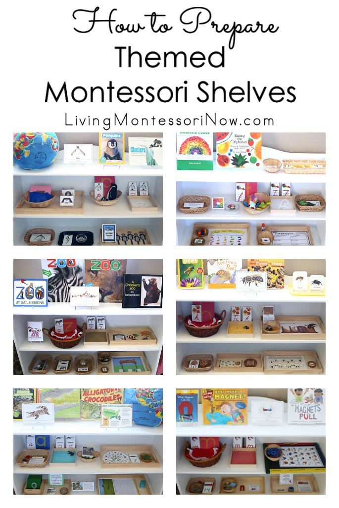 How to Prepare Themed Montessori Shelves