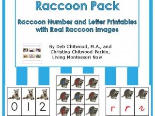 Montessori-Inspired Raccoon Pack