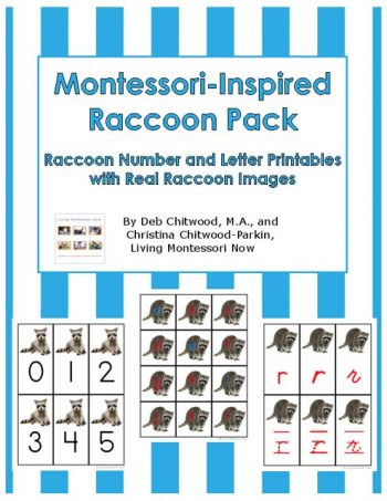 Free Raccoon Printables and Montessori-Inspired Raccoon Activities {Kissing Hand Unit}
