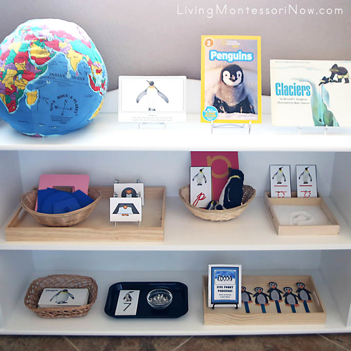 Montessori Shelves with a Penguin Theme