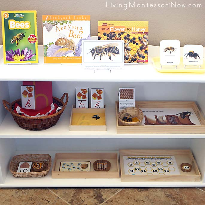 Montessori Shelves with a Bee Theme