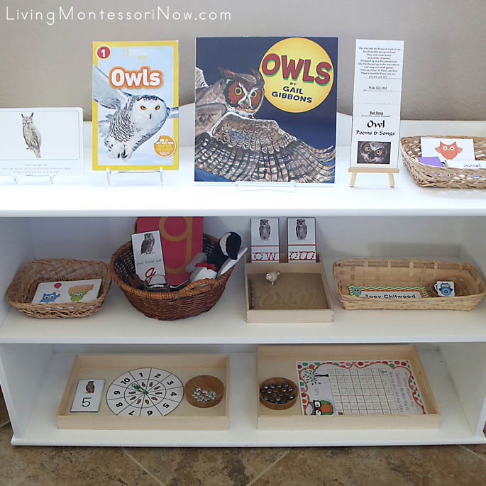 Montessori Shelves with an Owl Theme