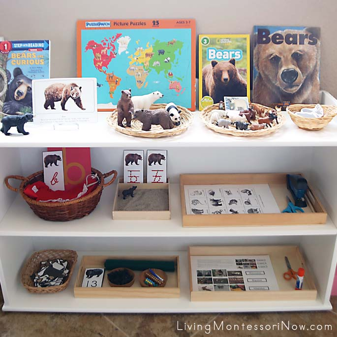 Montessori Shelves with a Bear Theme
