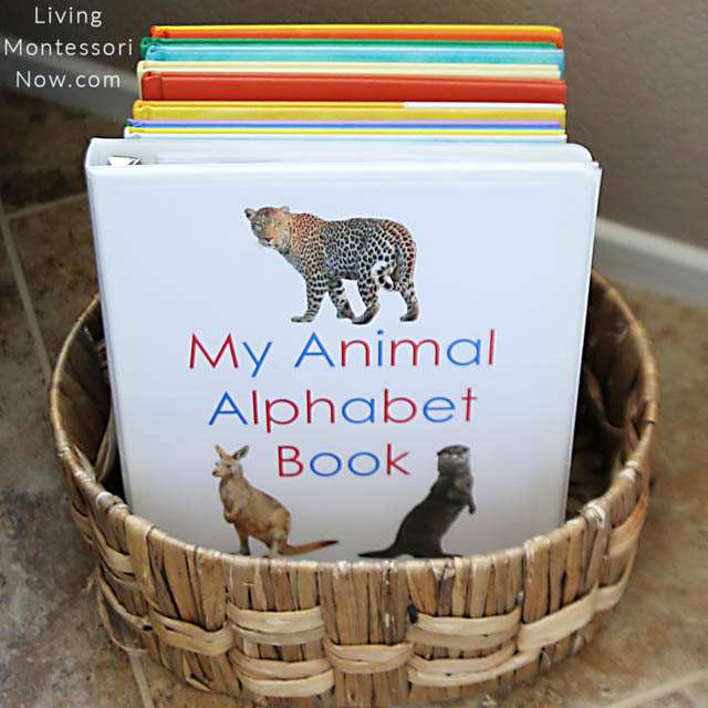 """My Animal Alphabet Book"" in Book Basket"