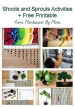 Shoots and Sprouts Activities + Free Printable from Montessori By Mom