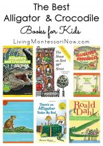 The Best Alligator and Crocodile Books for Kids