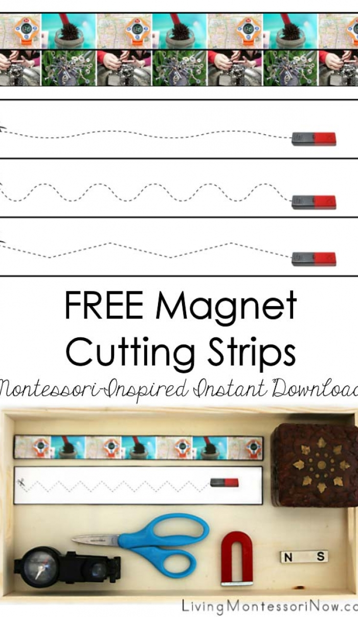 FREE Magnet Cutting Strips (Montessori-Inspired Instant Download)