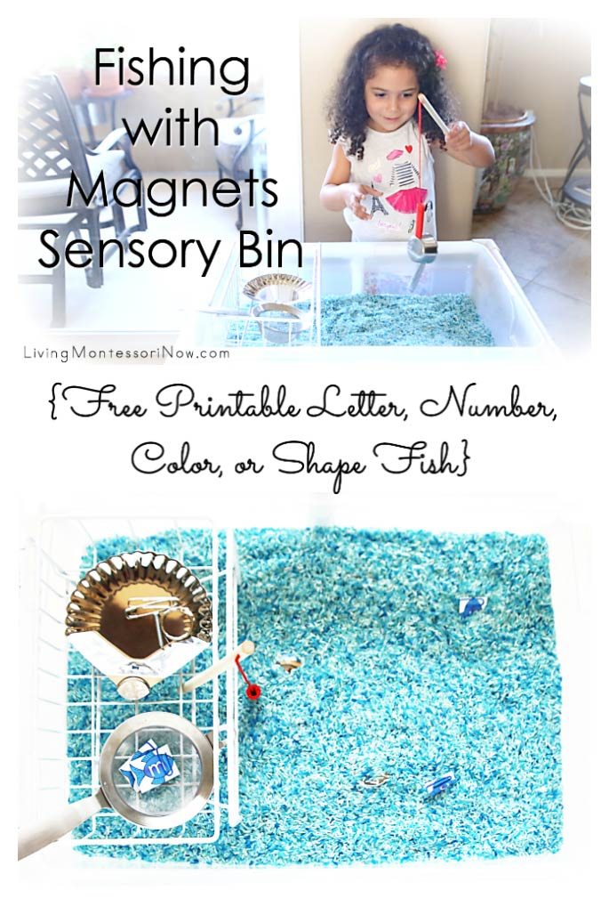 Fishing with Magnets Sensory Bin {Free Printable Letter, Number, Color, or Shape Fish}