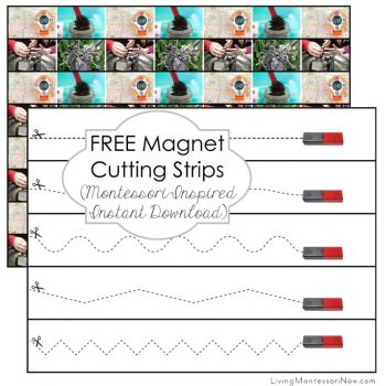 Free Magnet Cutting Strips
