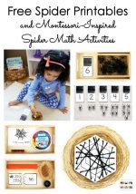 Free Spider Printables and Montessori-Inspired Spider Math Activities