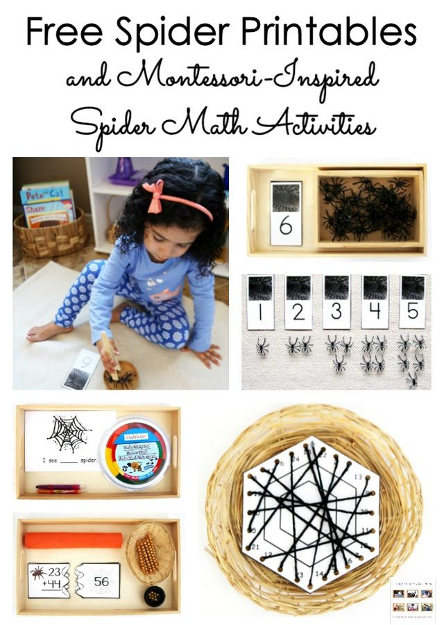 free-spider-printables-and-montessori-inspired-spider-math-activities