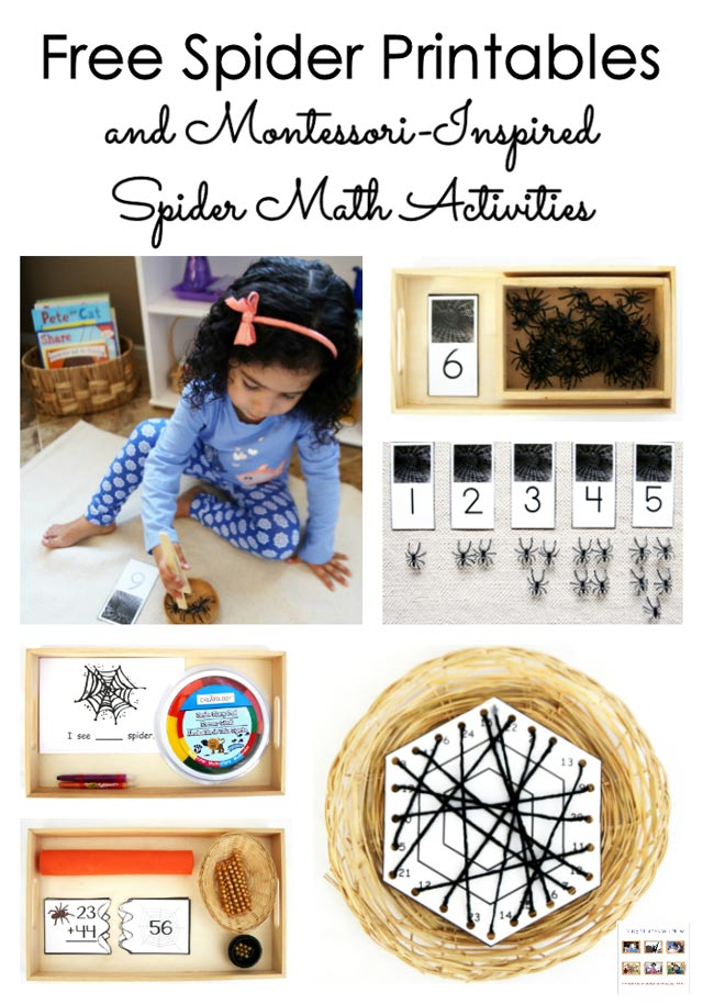 Free Spider Printables and Montessori-Inspired Spider Math ...