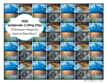 free-spiderweb-cutting-strips