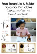 Free Tarantula and Spider Do-a-Dot Printables (Montessori-Inspired Instant Downloads)