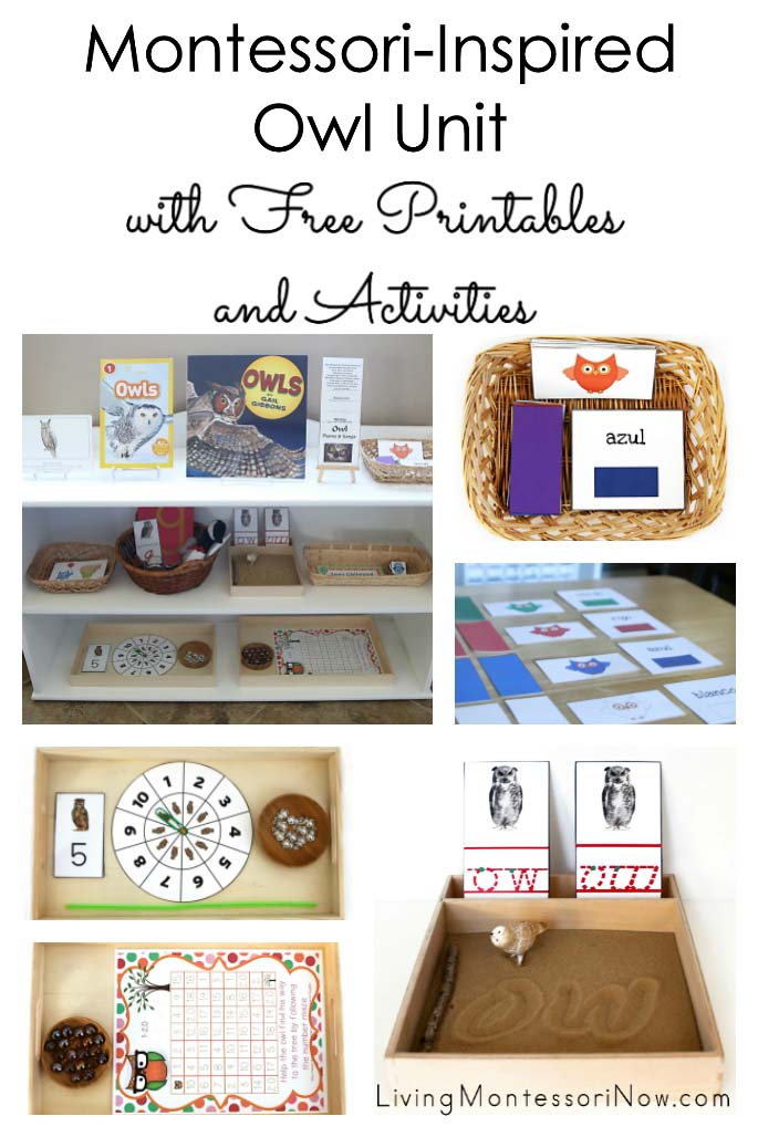 Montessori-Inspired Owl Unit with Free Printables and Activities